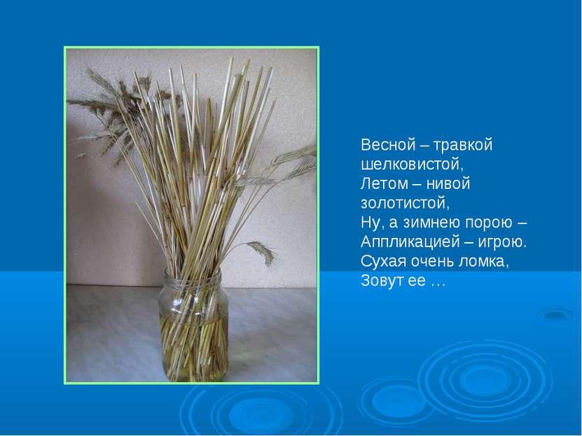 Весной – травкой шелковистой, Летом – нивой золотистой, Ну, а зимнею порою – ...