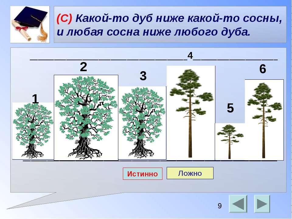 (С) Какой-то дуб ниже какой-то сосны, и любая сосна ниже любого дуба. _______...