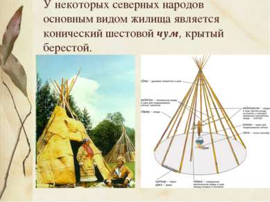 У некоторых северных народов основным видом жилища является конический шестов...
