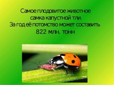 Самое плодовитое животное самка капустной тли. За год её потомство может сост...
