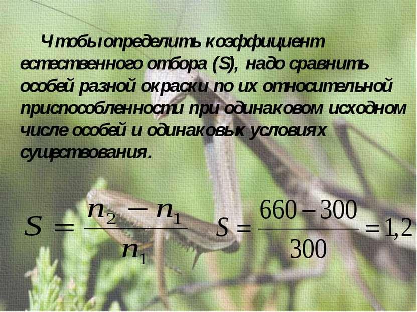 Чтобы определить коэффициент естественного отбора (S), надо сравнить особей р...