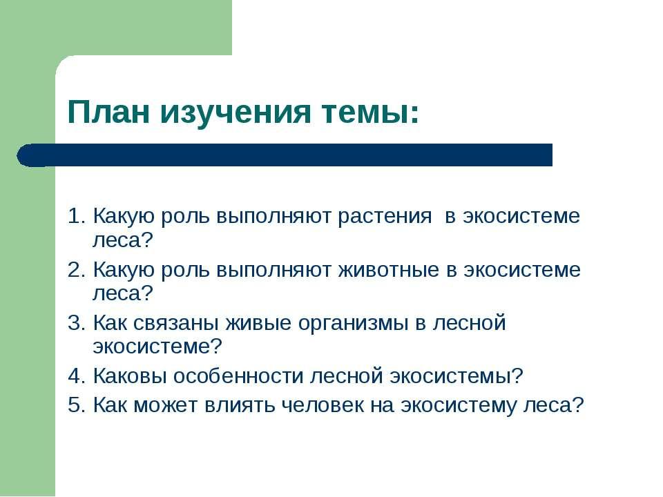 План изучения темы: 1. Какую роль выполняют растения в экосистеме леса? 2. Ка...