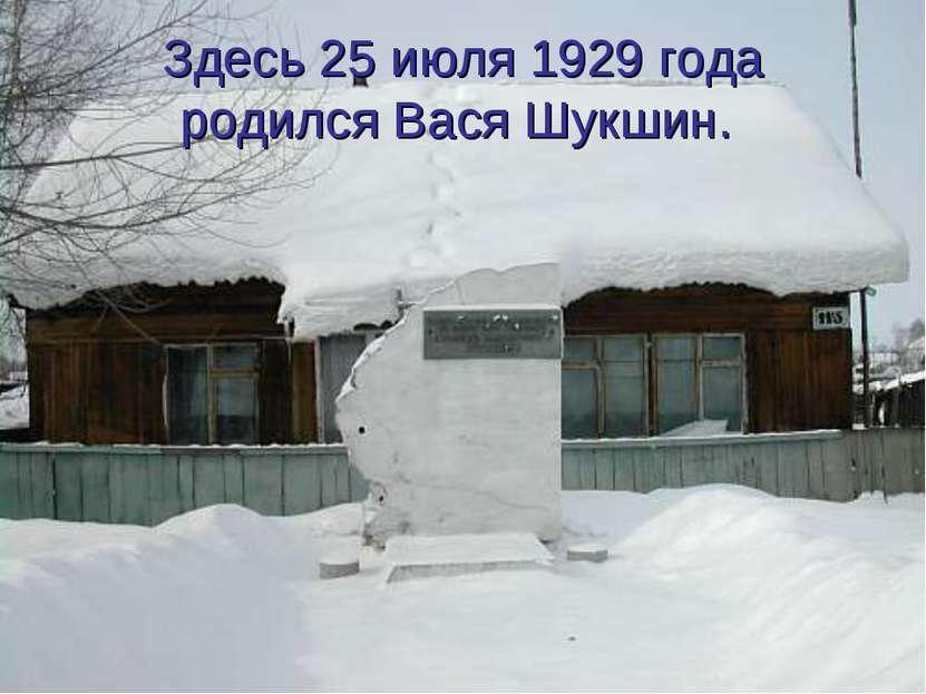 Здесь 25 июля 1929 года родился Вася Шукшин.