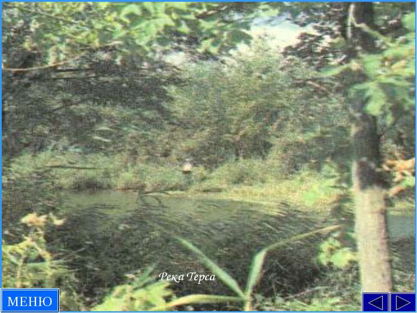 Река Терса МЕНЮ