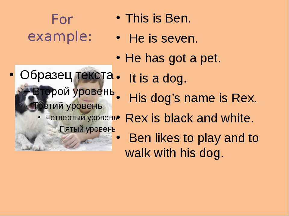 For example: This is Ben. He is seven. He has got a pet. It is a dog. His dog...