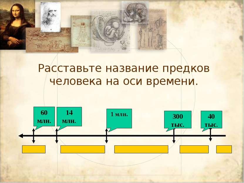 Расставьте название предков человека на оси времени. 60 млн. 14 млн. 1 млн. 3...