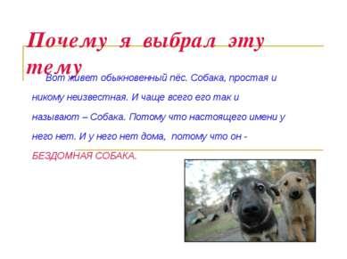 Почему я выбрал эту тему Вот живет обыкновенный пёс. Собака, простая и никому...