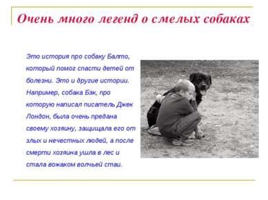 Очень много легенд о смелых собаках Это история про собаку Балто, который пом...