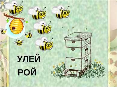 УЛЕЙ РОЙ