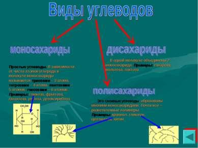 Простые углеводы. В зависимости от числа атомов углерода в молекуле моносахар...