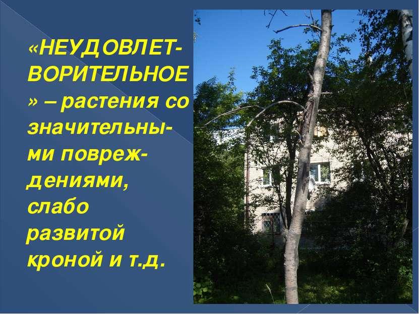 «НЕУДОВЛЕТ-ВОРИТЕЛЬНОЕ» – растения со значительны-ми повреж-дениями, слабо ра...