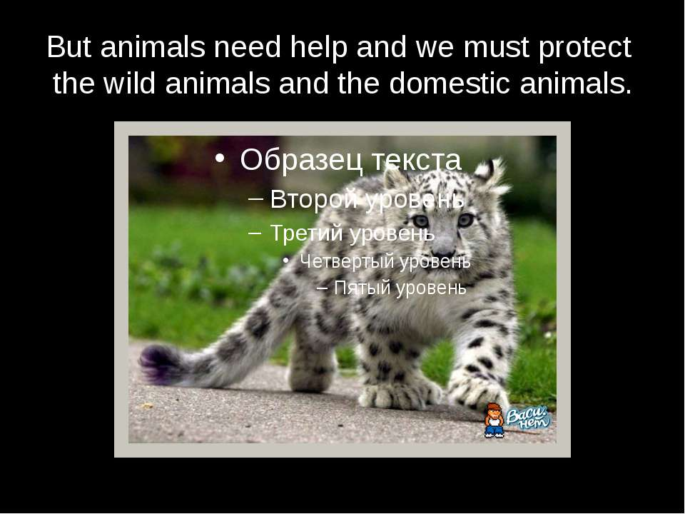 But animals need help and we must protect the wild animals and the domestic a...