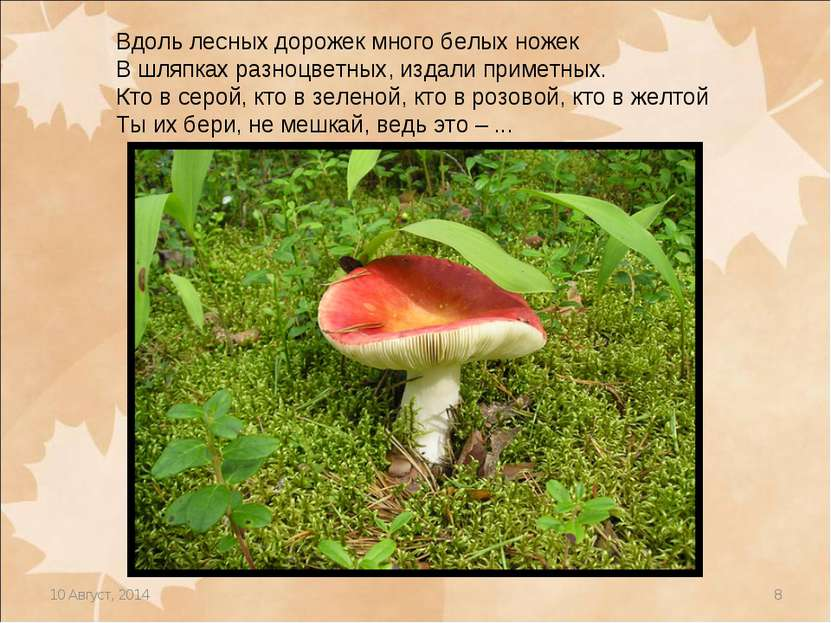 * * Вдоль лесных дорожек много белых ножек В шляпках разноцветных, издали при...