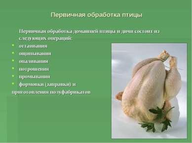 Первичная обработка птицы Первичная обработка домашней птицы и дичи состоит и...