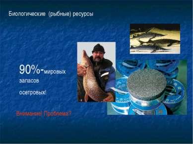 Биологические (рыбные) ресурсы 90%-мировых запасов осетровых! Внимание! Пробл...