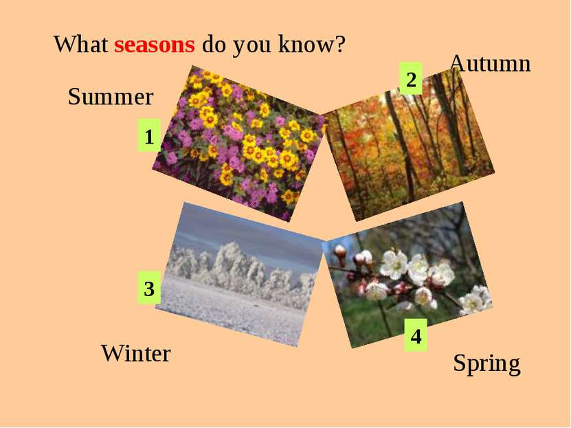 Summer Autumn Winter Spring What seasons do you know? 1 2 3 4