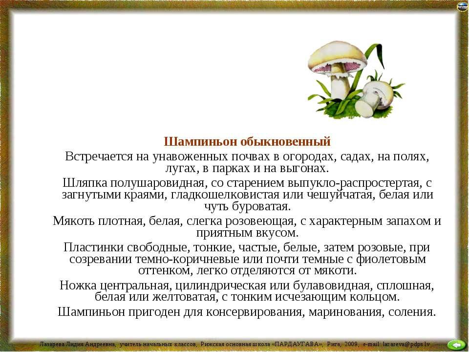 Шампиньон обыкновенный Встречается на унавоженных почвах в огородах, садах, н...