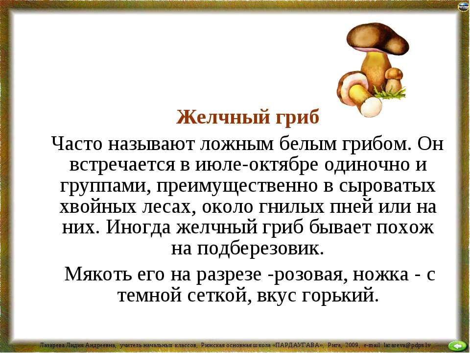 Желчный гриб Часто называют ложным белым грибом. Он встречается в июле-октябр...