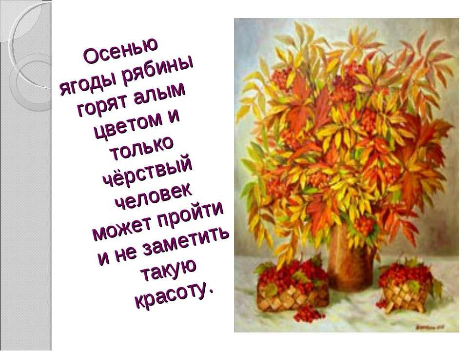 Осенью ягоды рябины горят алым цветом и только чёрствый человек может пройти ...