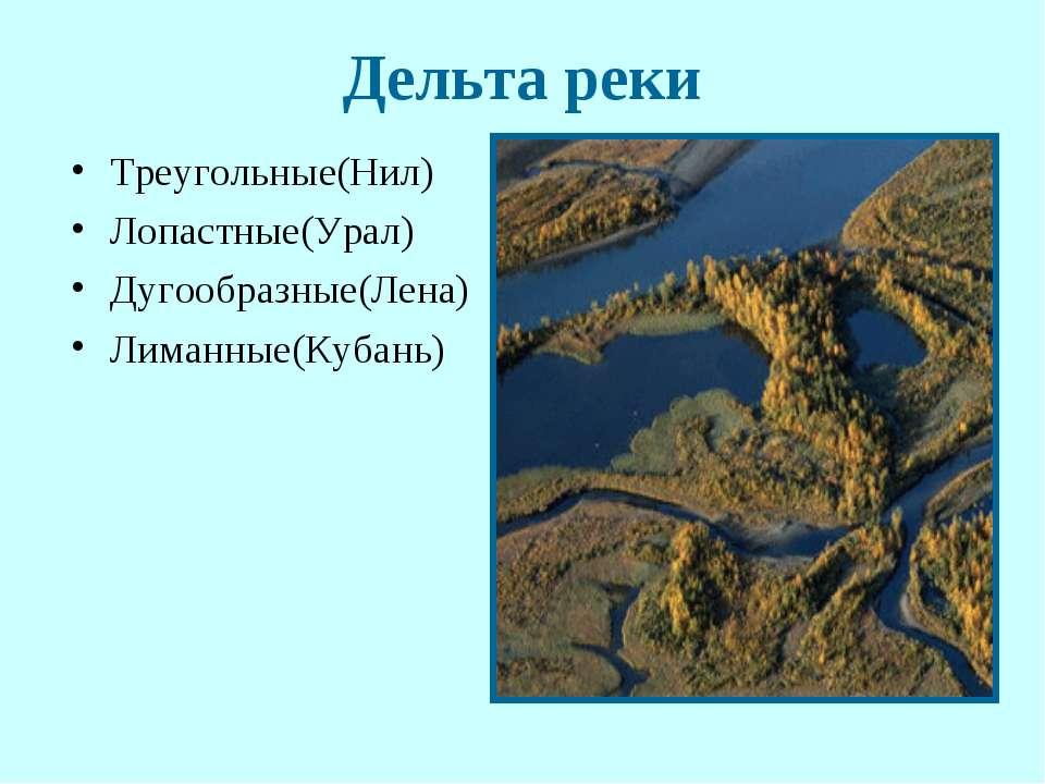 Дельта реки Треугольные(Нил) Лопастные(Урал) Дугообразные(Лена) Лиманные(Кубань)