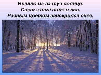 Вышло из-за туч солнце. Свет залил поле и лес. Разным цветом заискрился снег.