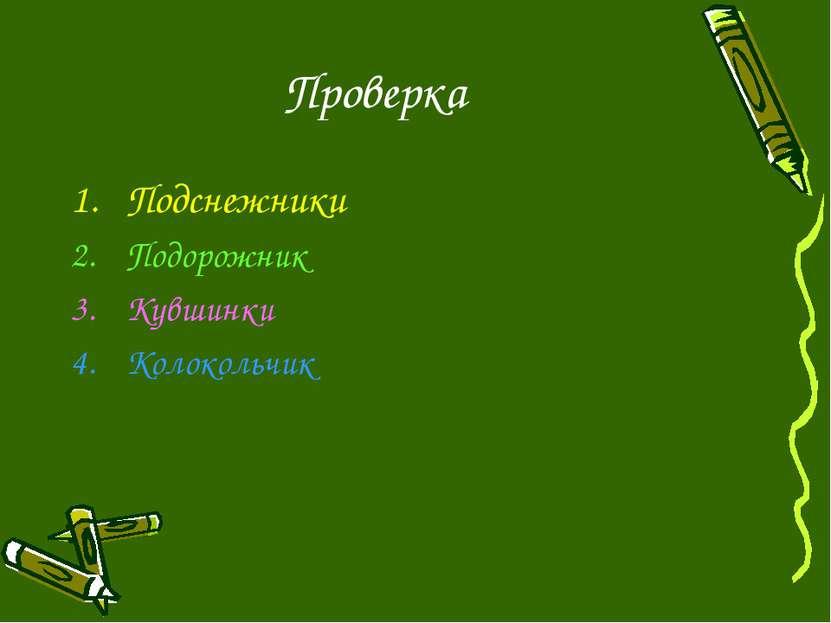 Проверка Подснежники Подорожник Кувшинки Колокольчик