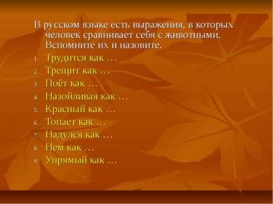 В русском языке есть выражения, в которых человек сравнивает себя с животными...