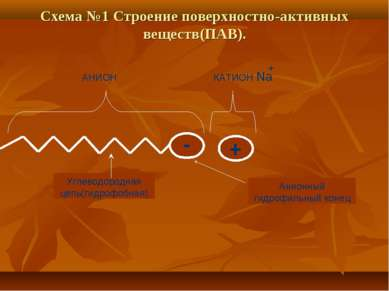 Схема №1 Строение поверхностно-активных веществ(ПАВ). - + АНИОН КАТИОН Na + У...