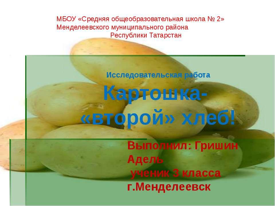 Исследовательская работа Картошка- «второй» хлеб! Выполнил: Гришин Адель учен...