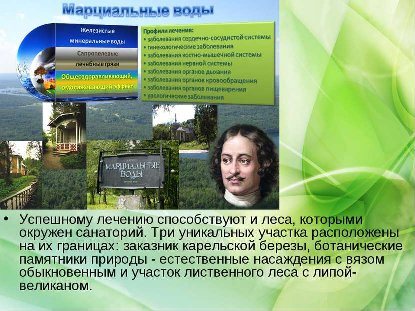 Успешному лечению способствуют и леса, которыми окружен санаторий. Три уникал...