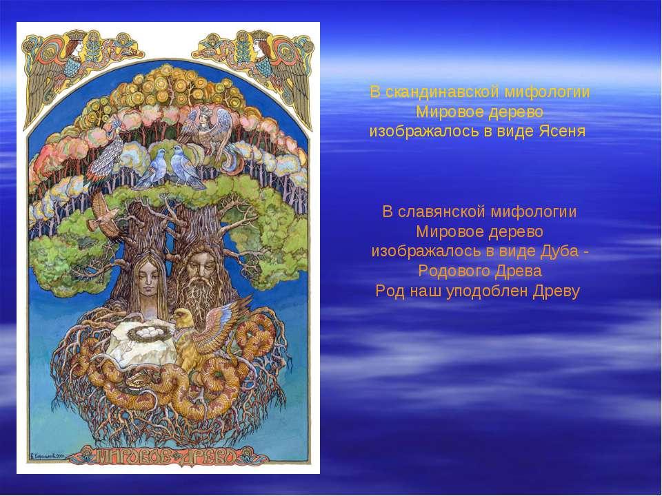 В скандинавской мифологии Мировое дерево изображалось в виде Ясеня В славянс...