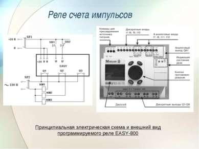 Реле счета импульсов Принципиальная электрическая схема и внешний вид програм...