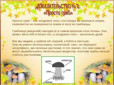 Просто гриб – это плодовое тело, состоящее из шляпки и ножки, появляется на п...