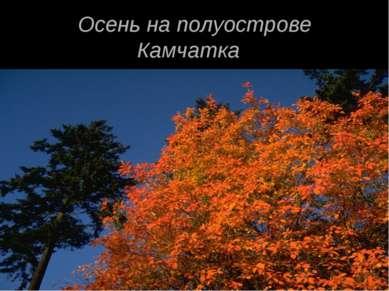 Осень на полуострове Камчатка