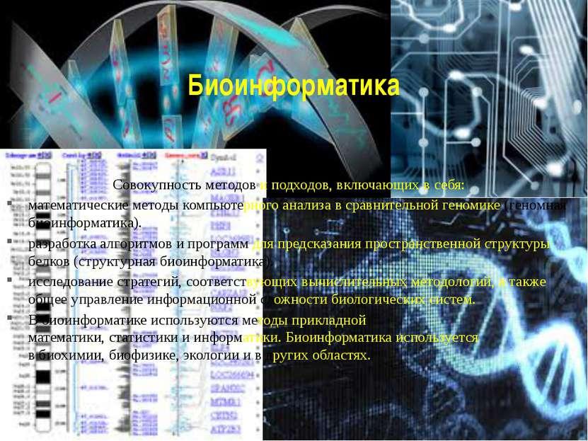 Биоинформатика Совокупность методов и подходов, включающих в себя: математиче...