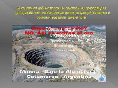 Интенсивная добыча полезных ископаемых, приводящая к деградации леса, исчезно...
