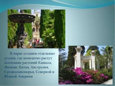 В парке созданы отдельные уголки, где компактно растут коллекции растений Кав...