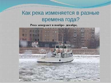 Как река изменяется в разные времена года? Река замерзает в ноябре- декабре,