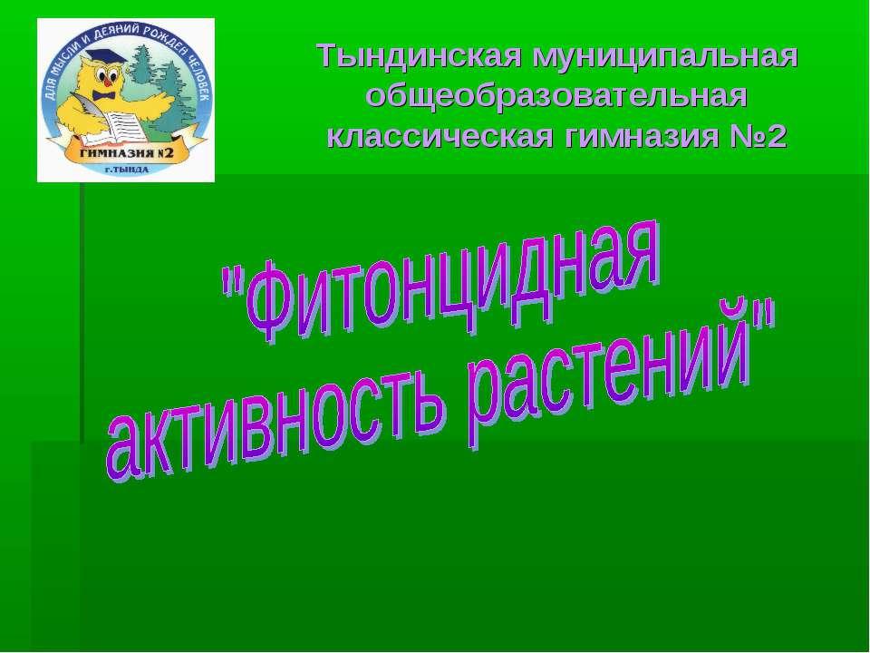 Тындинская муниципальная общеобразовательная классическая гимназия №2