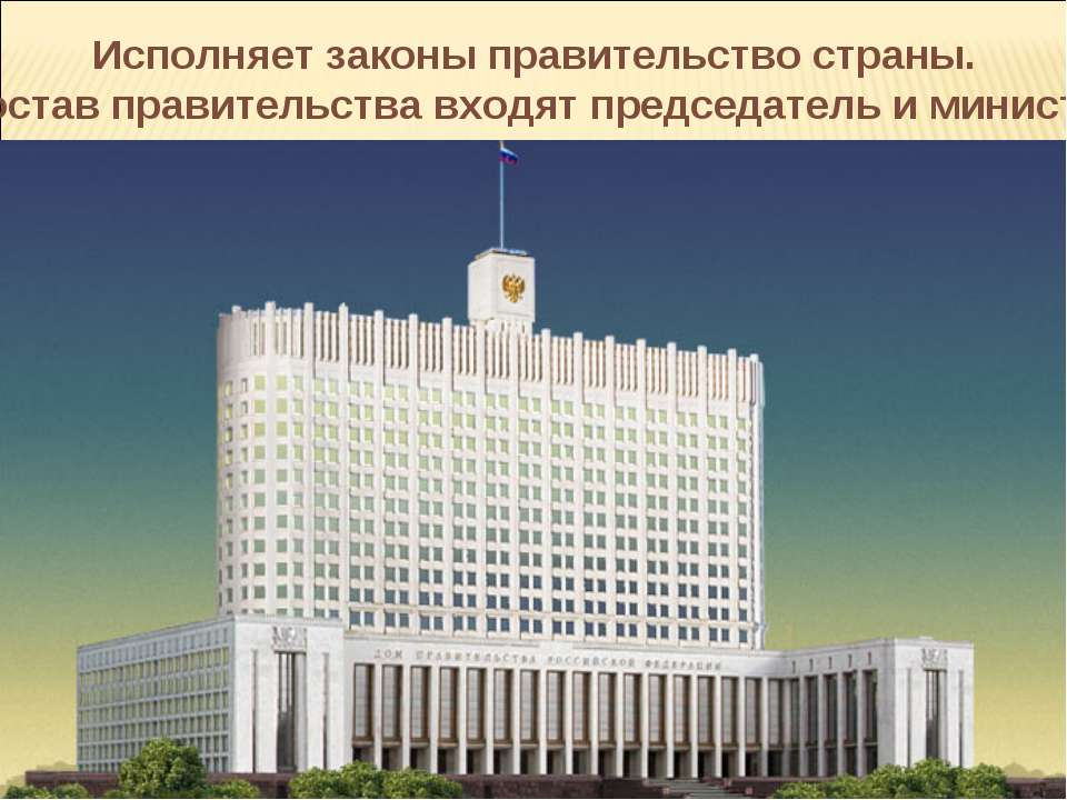 Исполняет законы правительство страны. В состав правительства входят председа...