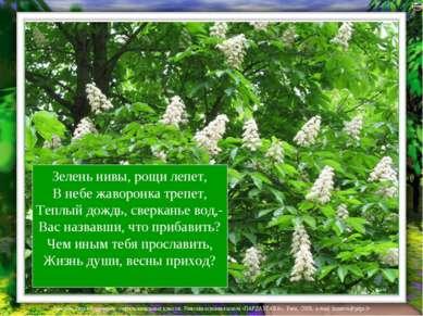 Зелень нивы, рощи лепет, В небе жаворонка трепет, Теплый дождь, сверканье вод...