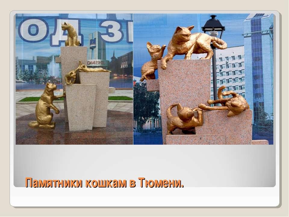 Памятники кошкам в Тюмени.