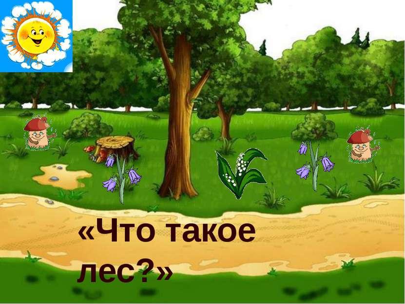 «Что такое лес?»