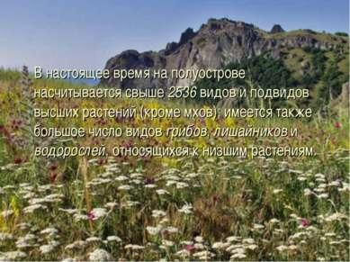 В настоящее время на полуострове насчитывается свыше 2536 видов и подвидов вы...