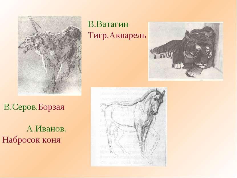 В.Серов.Борзая В.Ватагин Тигр.Акварель А.Иванов. Набросок коня