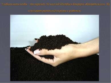 Главная часть почвы – это перегной. Из него под действием бактерий образуются...