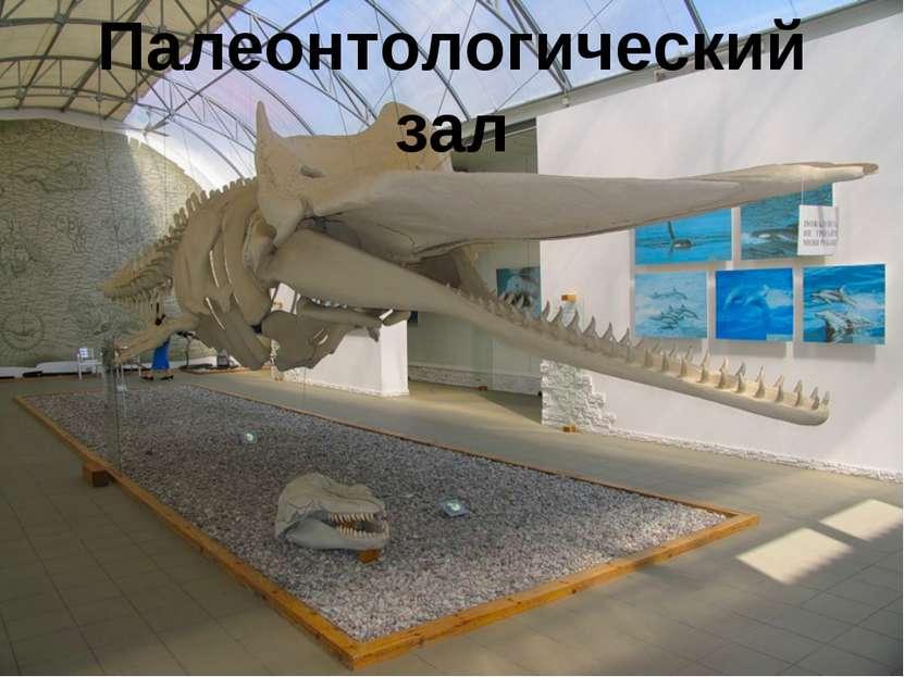 Палеонтологический зал