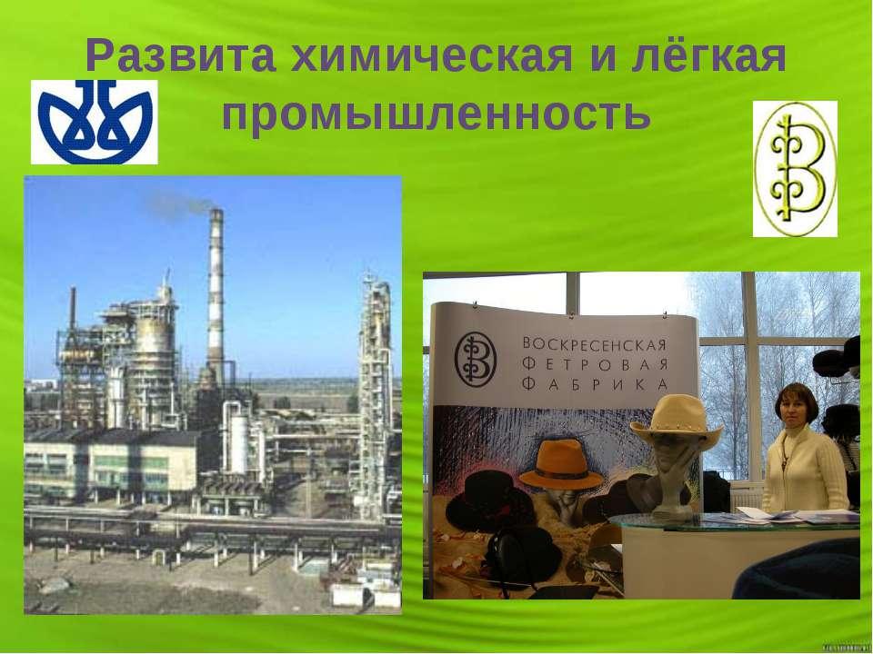 Развита химическая и лёгкая промышленность