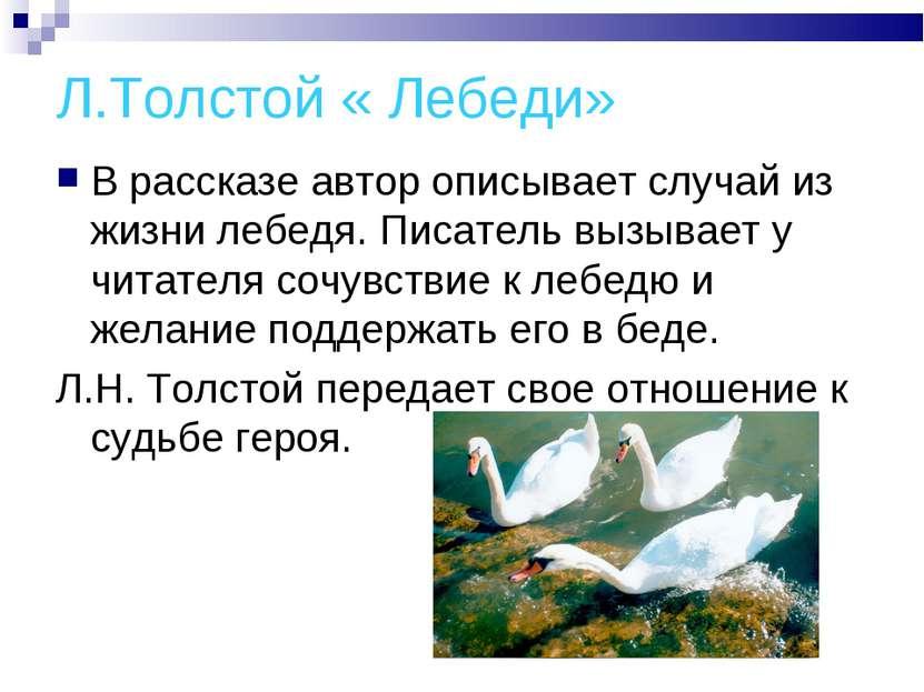 Л.Толстой « Лебеди» В рассказе автор описывает случай из жизни лебедя. Писате...