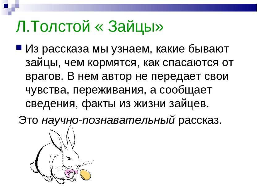 Л.Толстой « Зайцы» Из рассказа мы узнаем, какие бывают зайцы, чем кормятся, к...